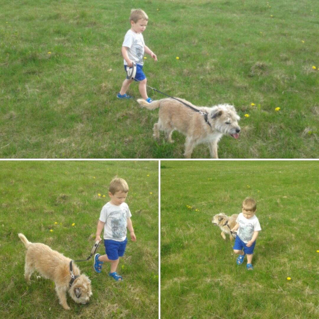Jake walking Molly