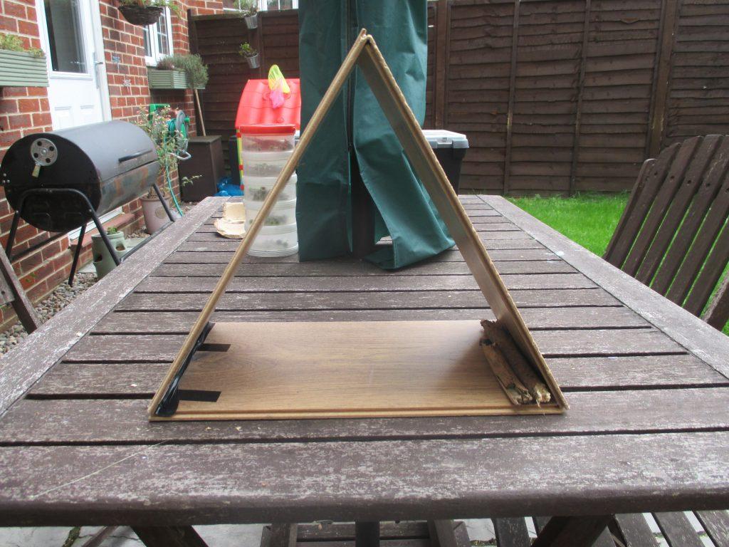 the house frame
