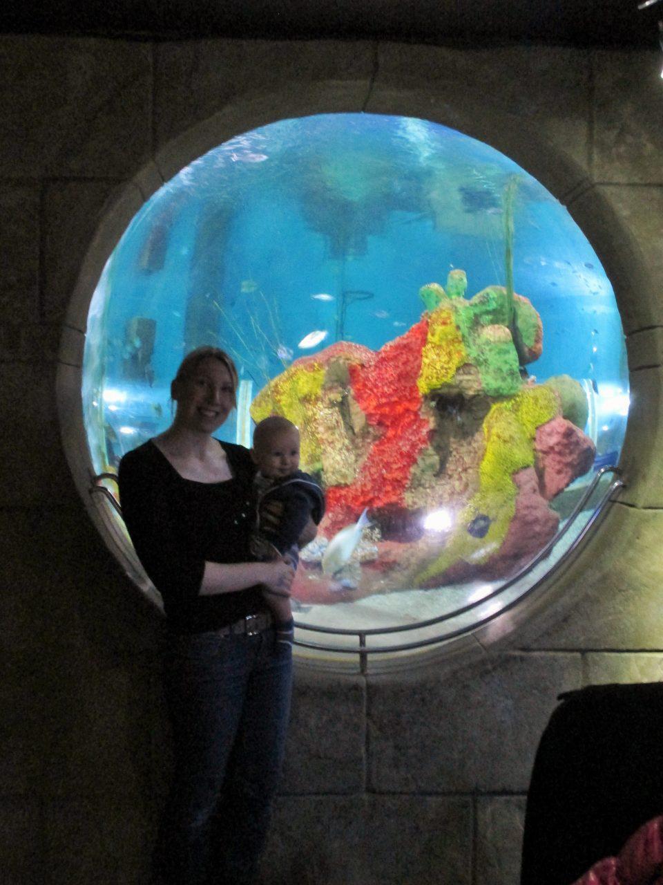 2 people stood in front of aquarium