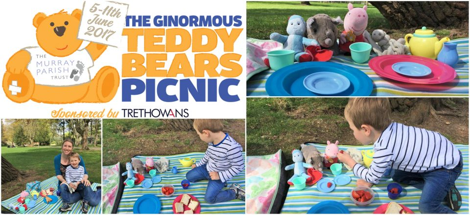 teddy bear's picnic feature post