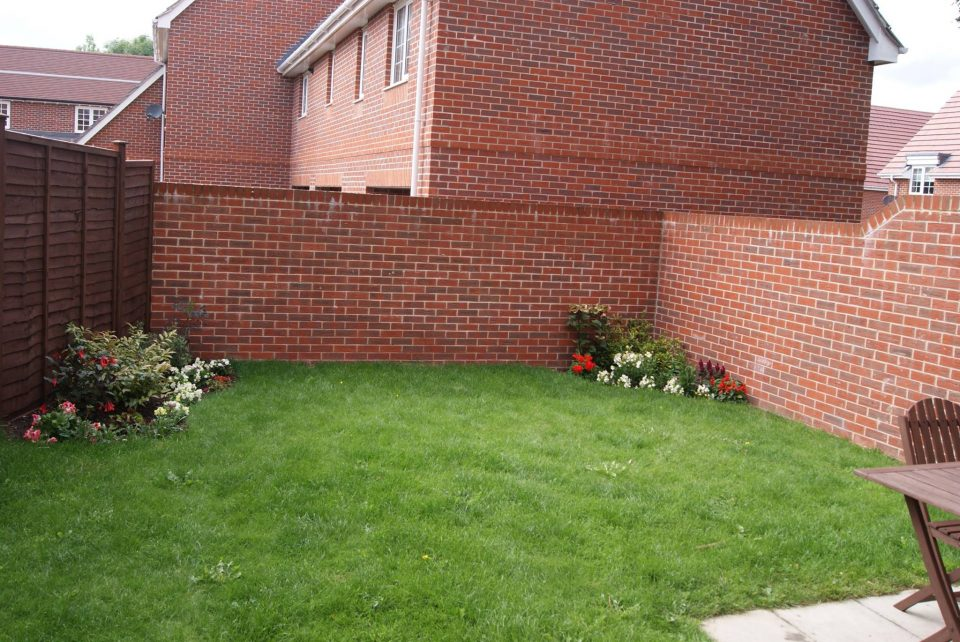 my small garden looking tidier with a nice lawn and flower beds