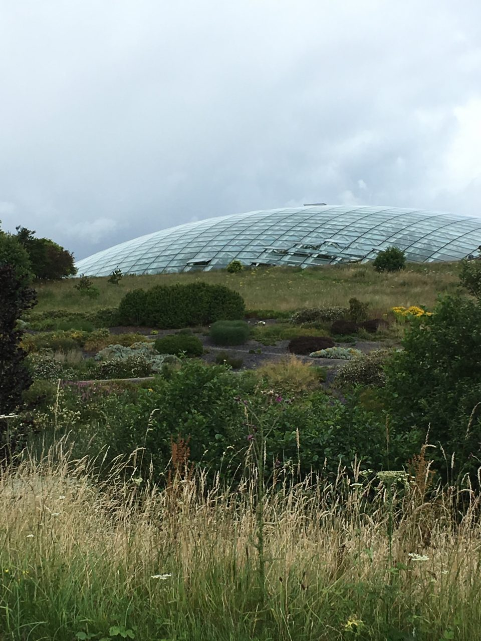 largest glass house