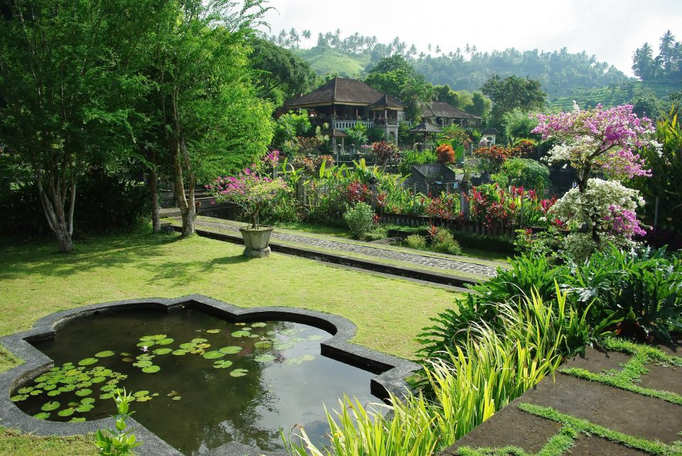 large garden with pond and flowers and plants