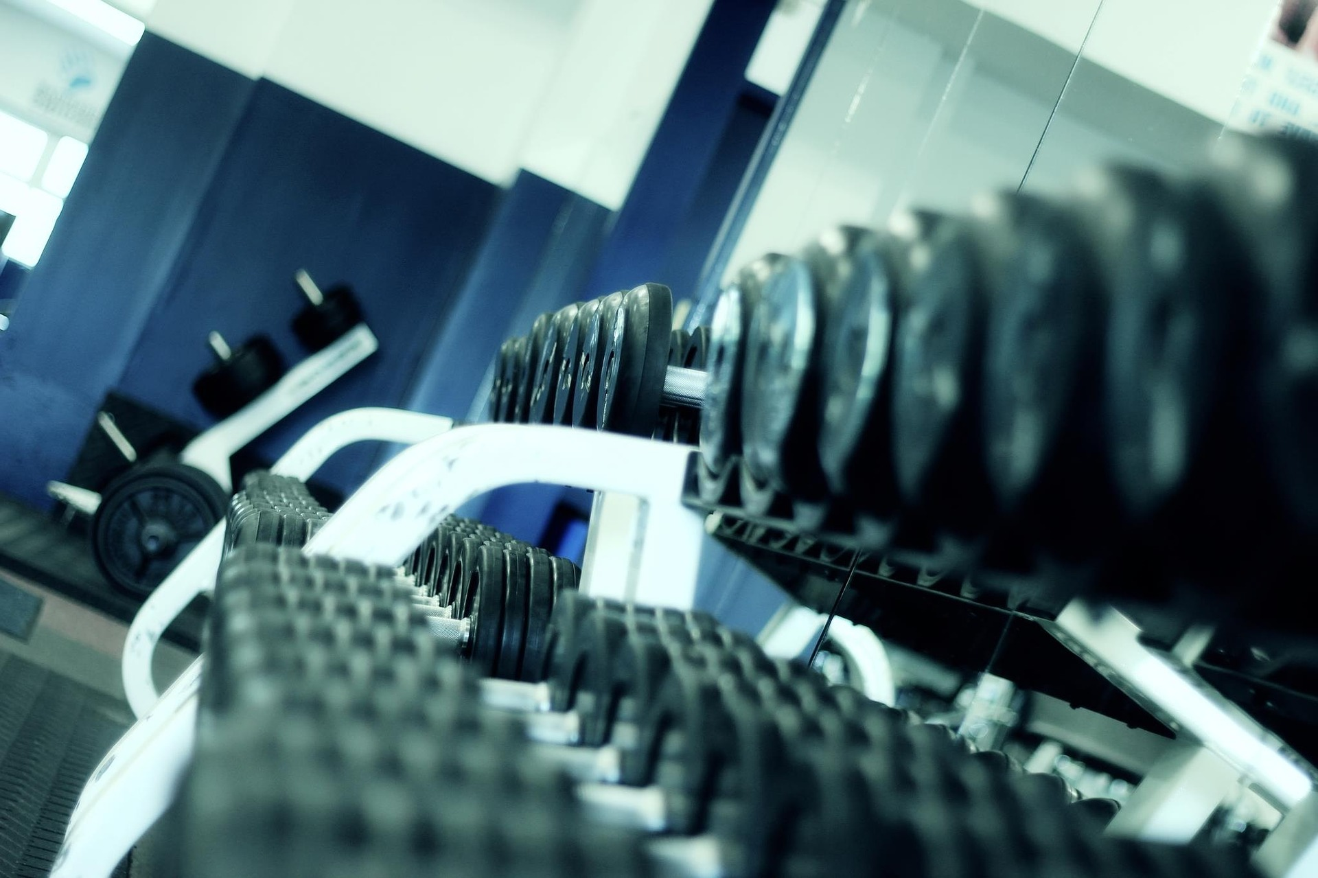 weights at the gym