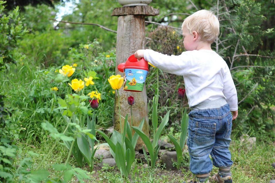 child watering the garden