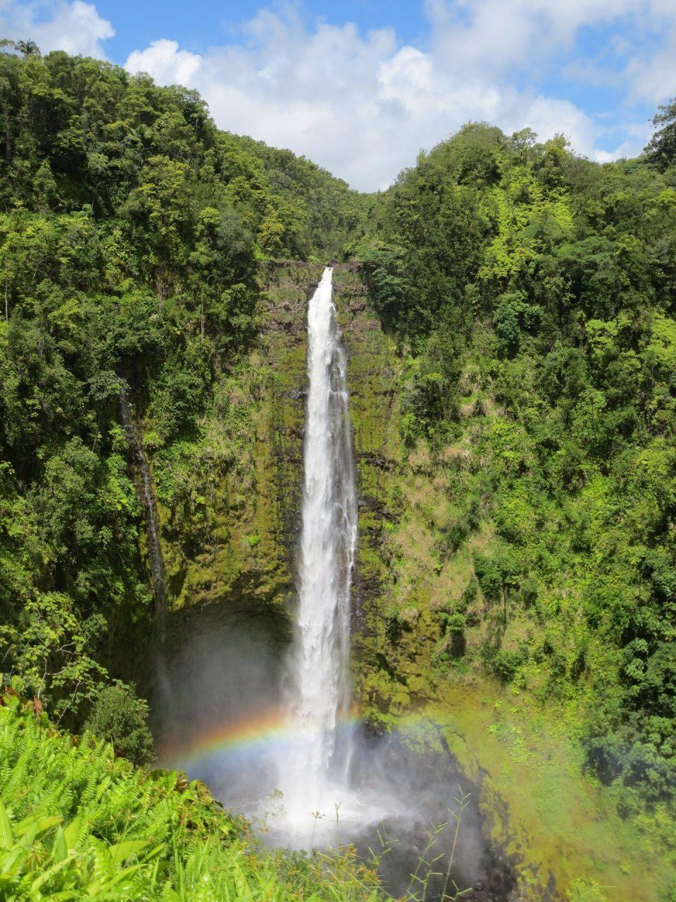 Akaka waterfall Hawaii
