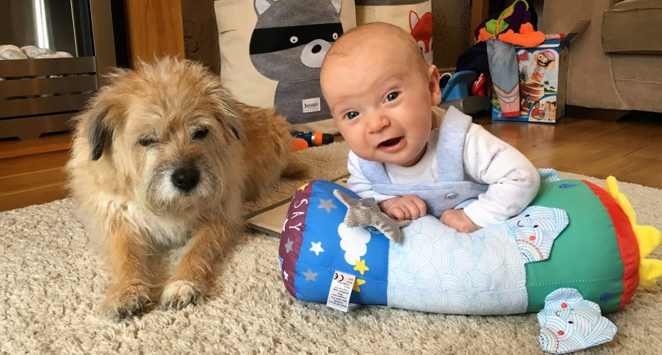 baby on tummy time toy next to a dog