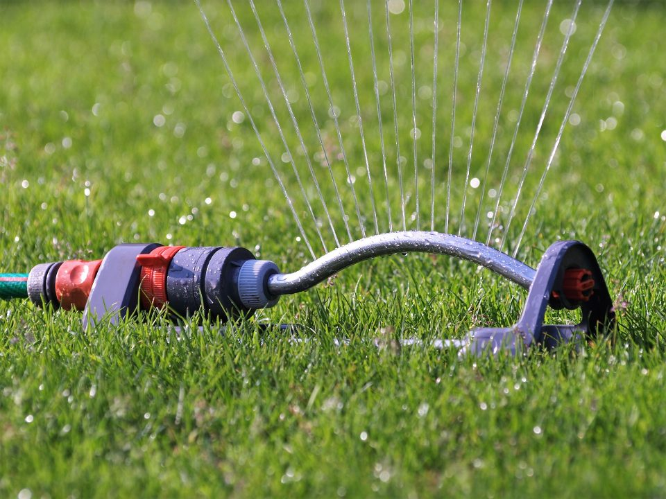 sprinkler system is one of the best gardening tips we can give