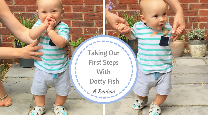 Taking our first steps with Dotty Fish, a review