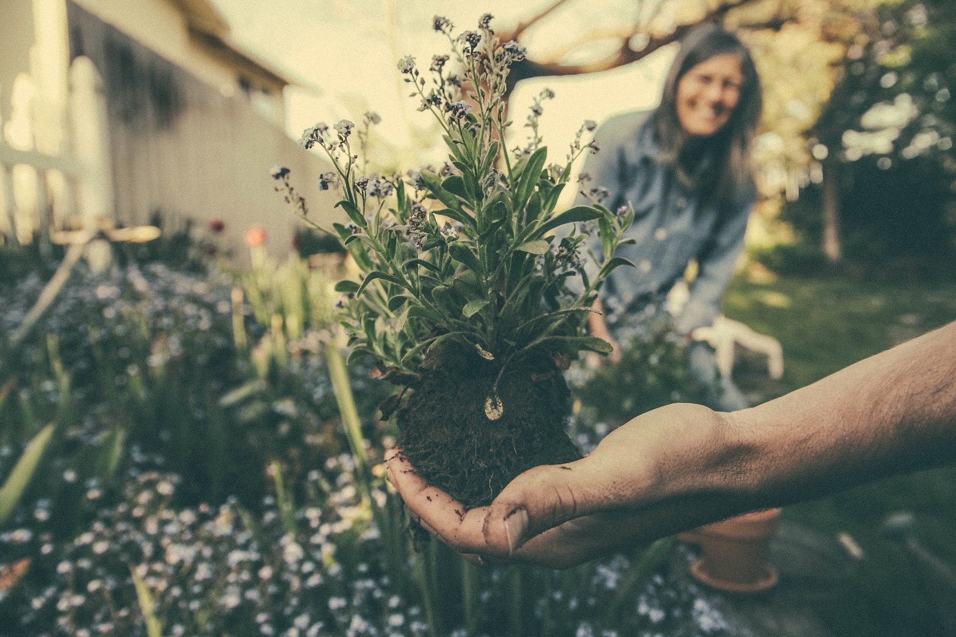 someone holding to a flower in their hand in the garden with a smiling woman in the background