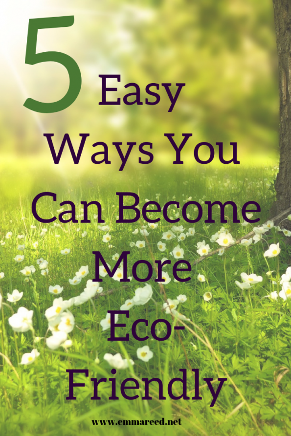 becoming more eco-friendly