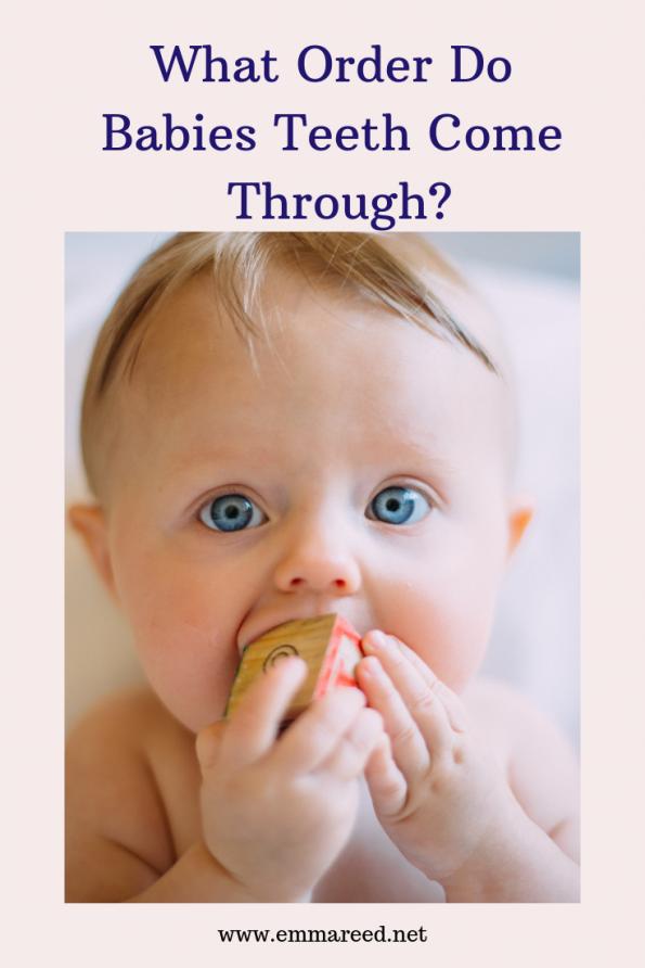 what order do babies teeth come through?