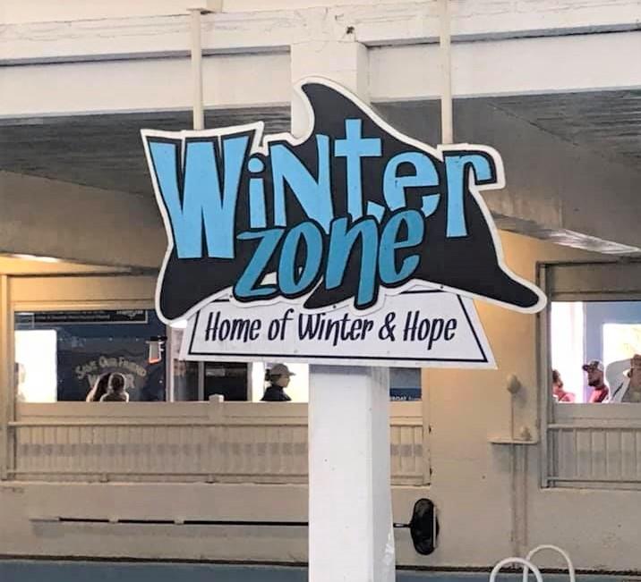 Winter zone sign