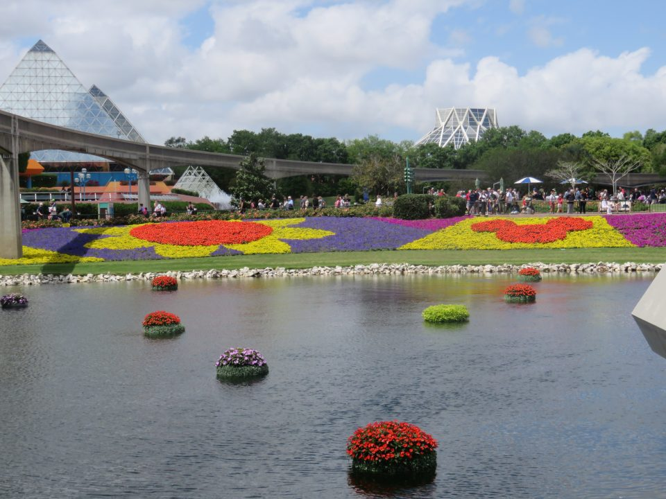 Epcot flowers across the water