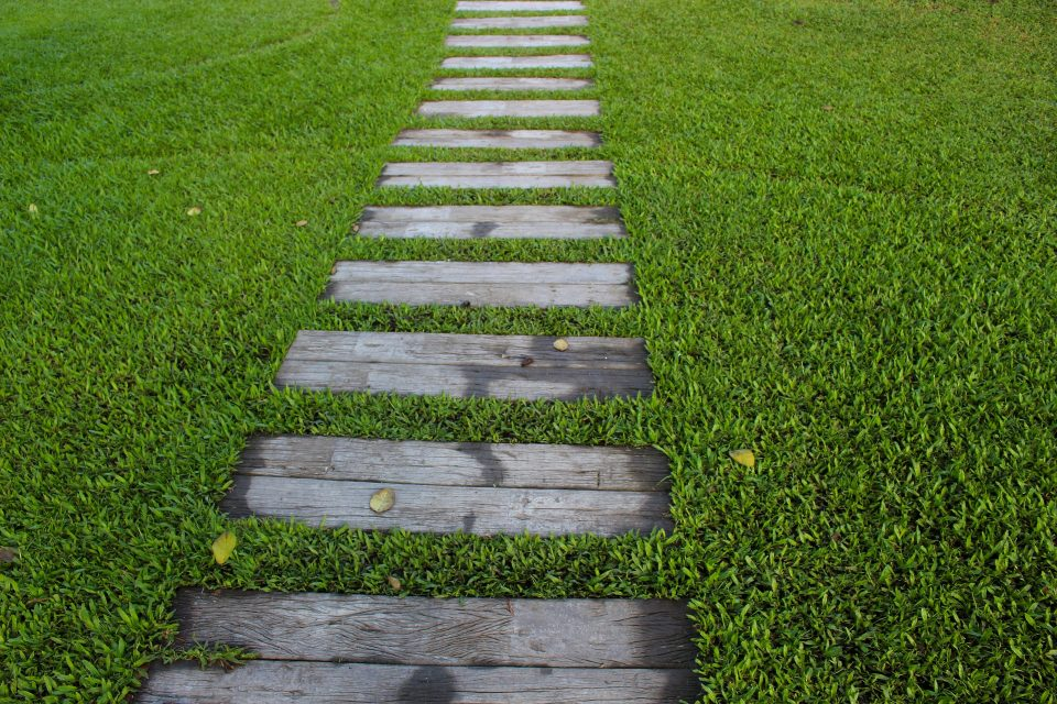 lawn with a wooden step pathway perfect for the spring garden
