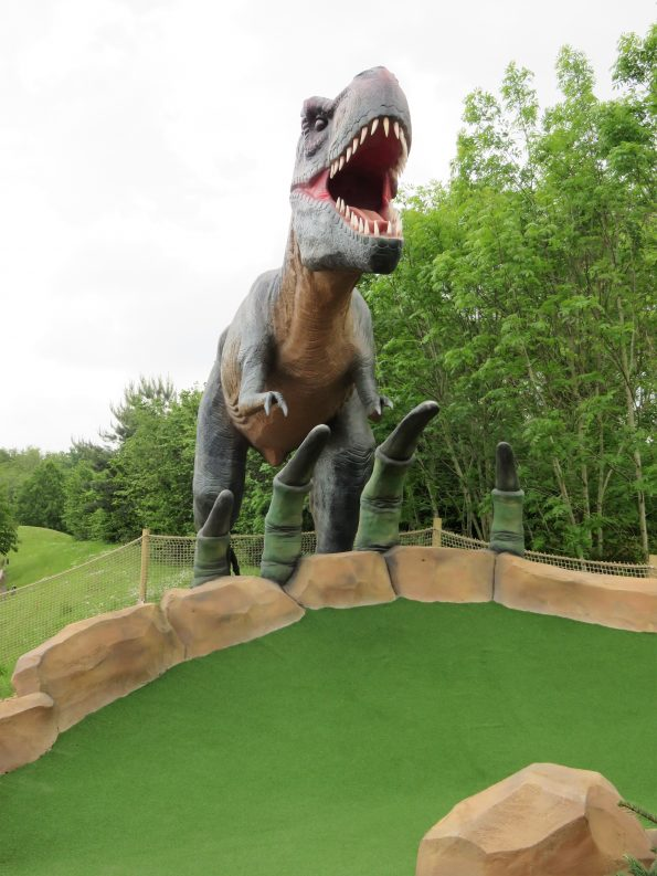 T-rex selfie spot and hole 2