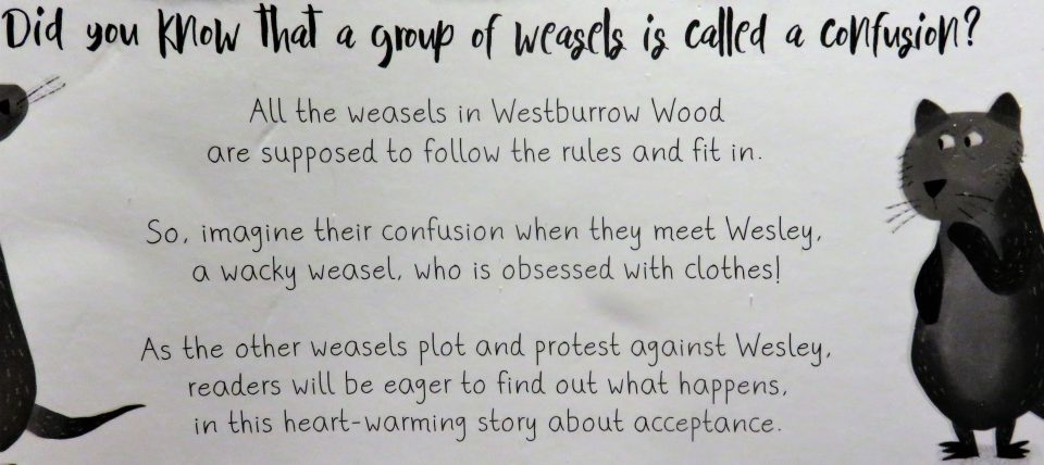 back cover of What Wesley Wore