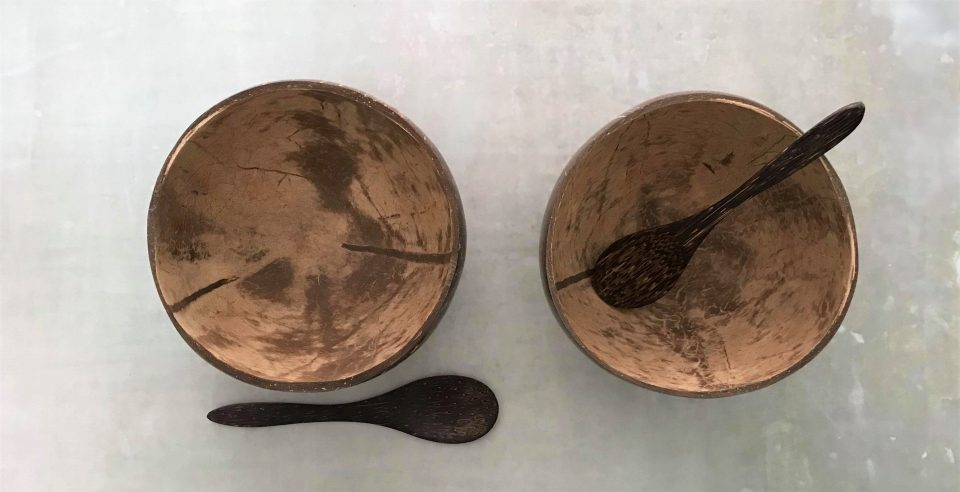 photo from above of the coconut bowls and spoons