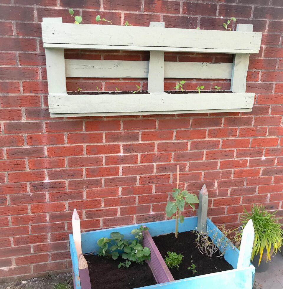 the completed pallet planter on the wall