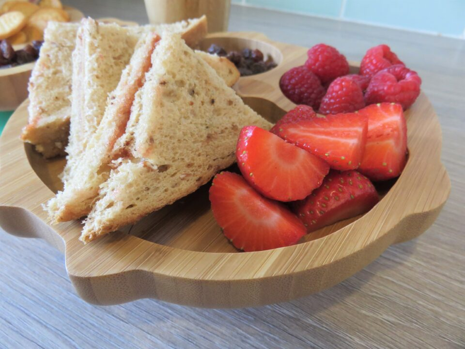 fruit and sandwiches in the owl plate
