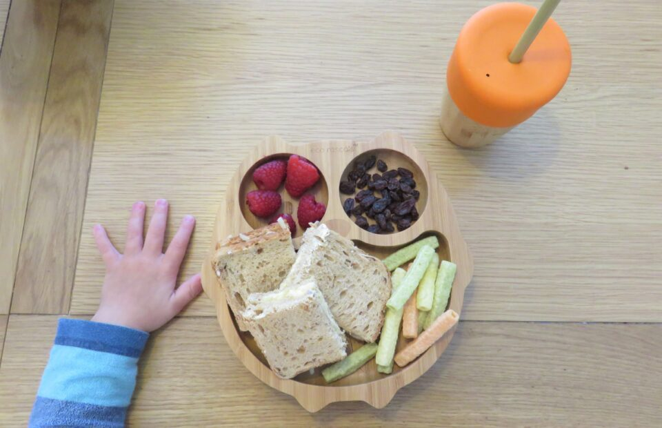 William's hand on the table with the owl plate with food and his cup