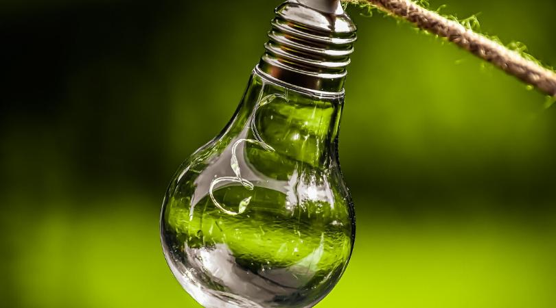an eco light bulb