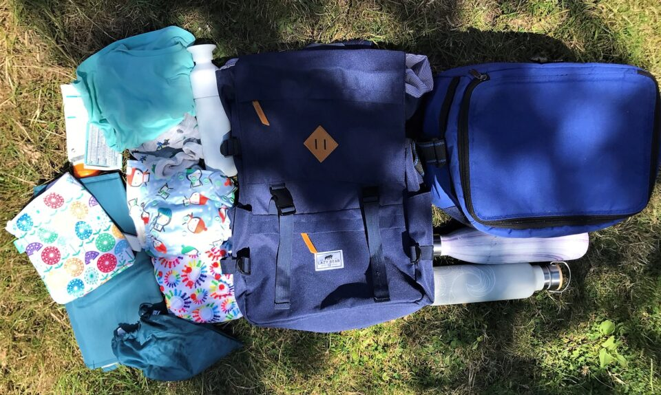 the full contents of the bag laid out on the grass