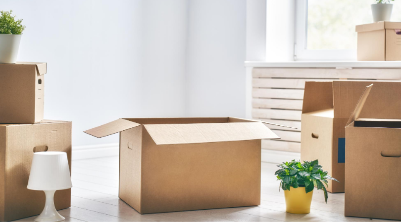 cardboard boxes for moving house with house plants nearby