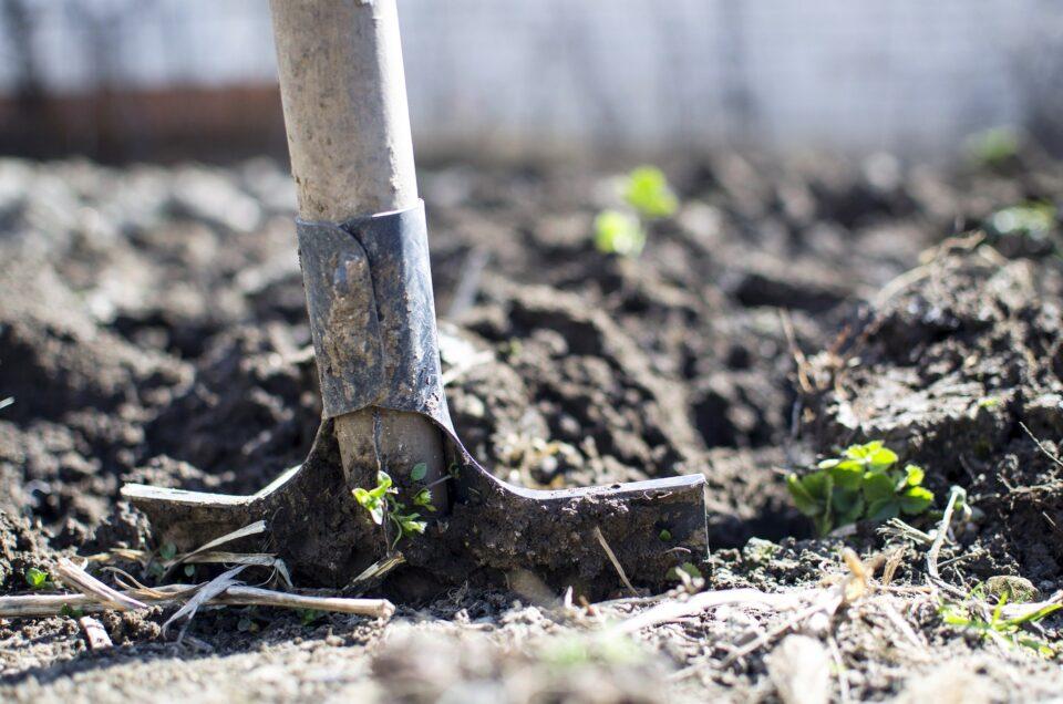 garden hoe in mud