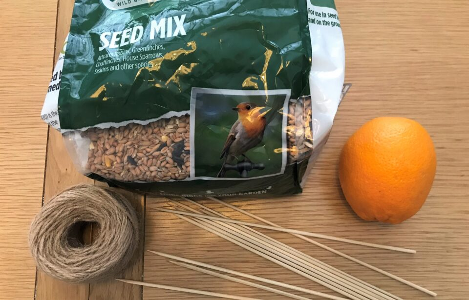 the ingredients for the bird feeder. seed mix, string, an orange and kebab skewers on the table