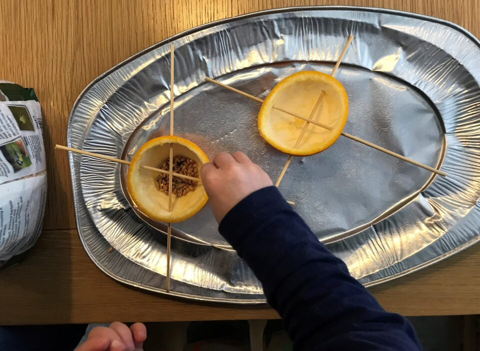 my son's hands filling the oranges that are on a silver party platter