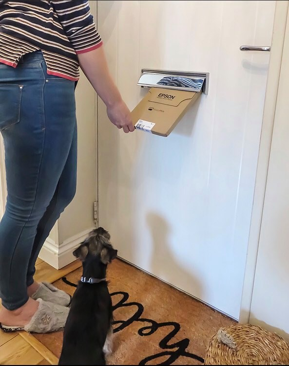 the ReadyPrint ink subscription coming through the letterbox with me receiving it and the puppy looking up at it
