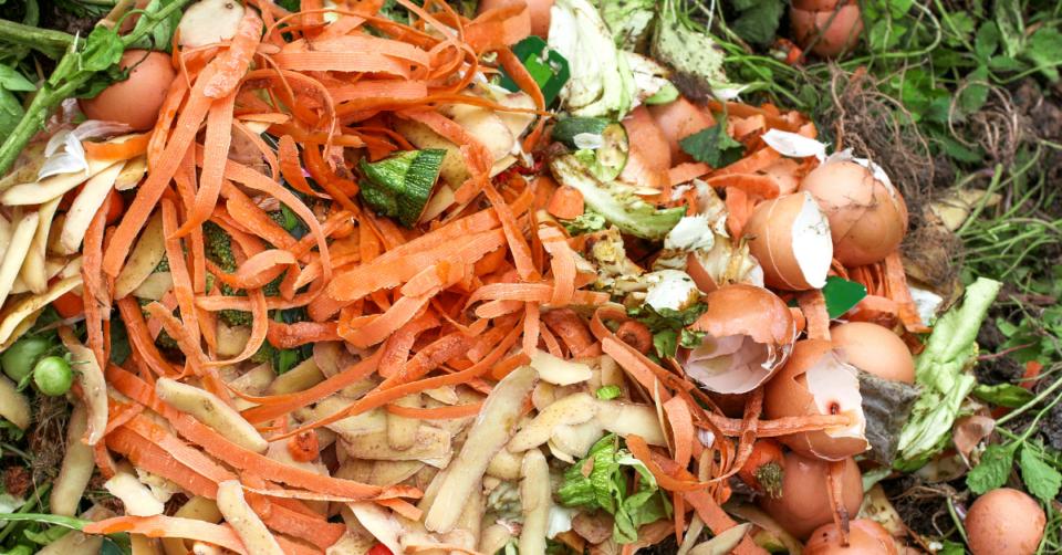 food scraps on a compost heap
