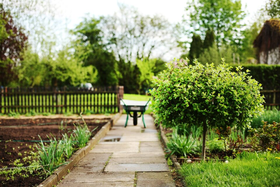 a cute country garden with a wheelbarrow sitting on the path