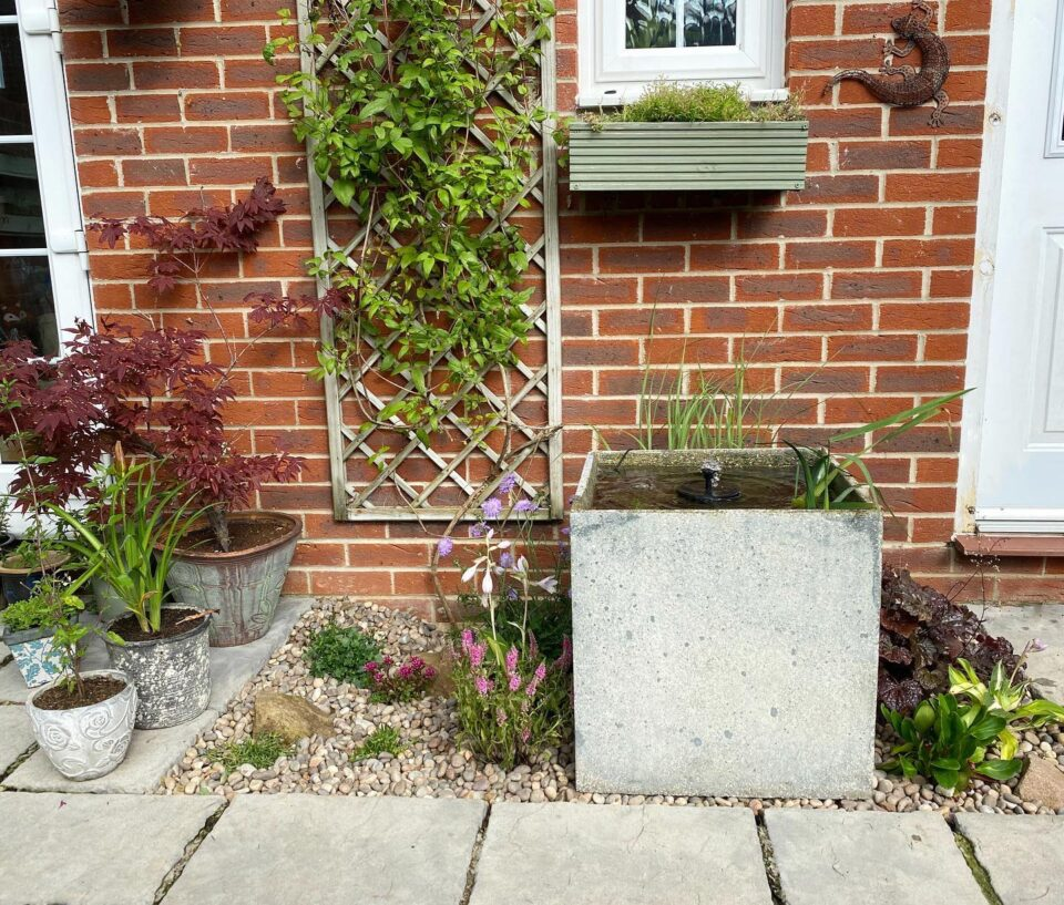 the pond planter and surrounding rockery completed