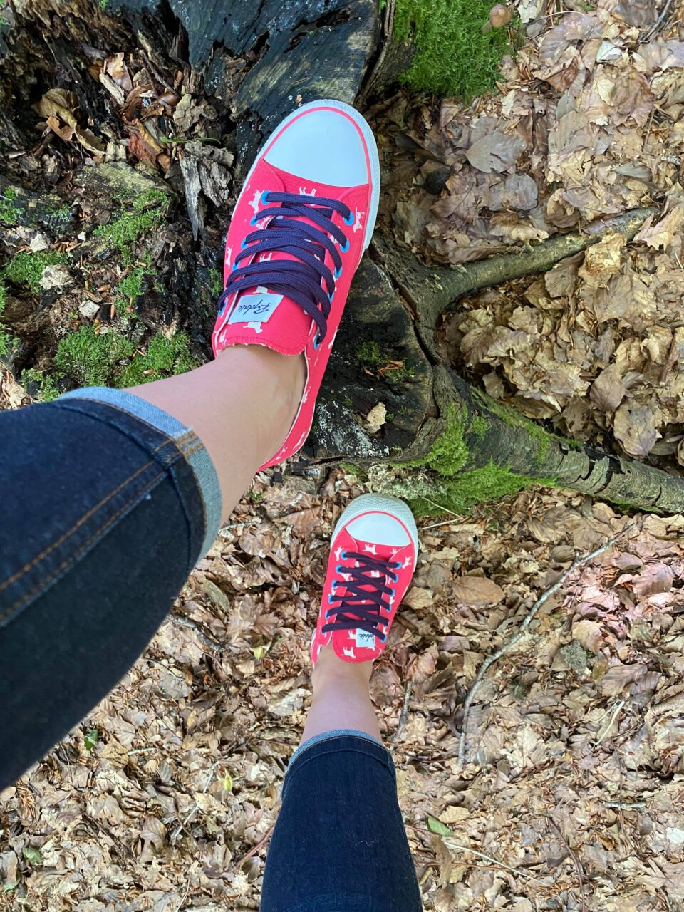 looking down on on the shoes on a tree trunk