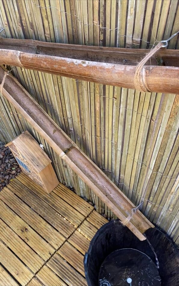 bamboo water collectors